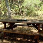 Scrap Wood Picnic Table