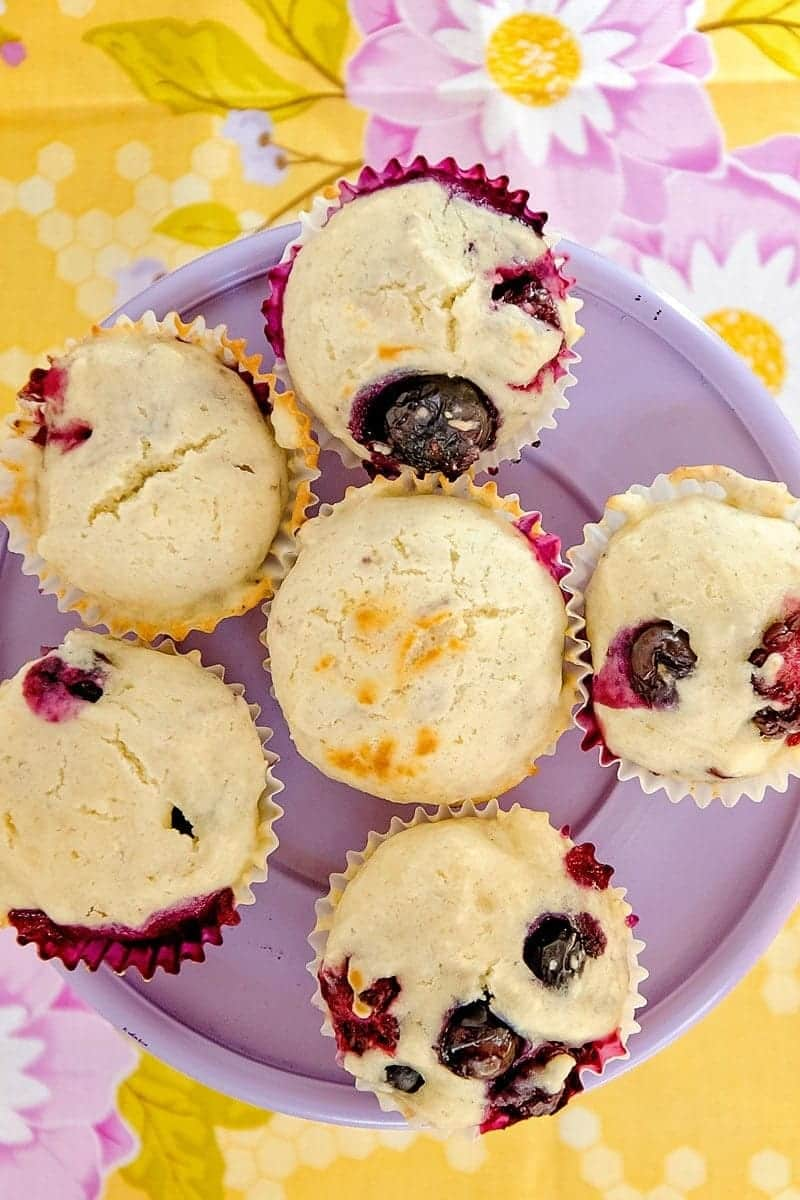 blueberry mini muffin recipe