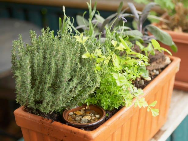 Herb Planter plus other Spring Gardening Ideas and Inspiration