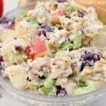 This Simple and Easy Waldorf Salad Recipe is super quick to put together and is always a hit with the family!