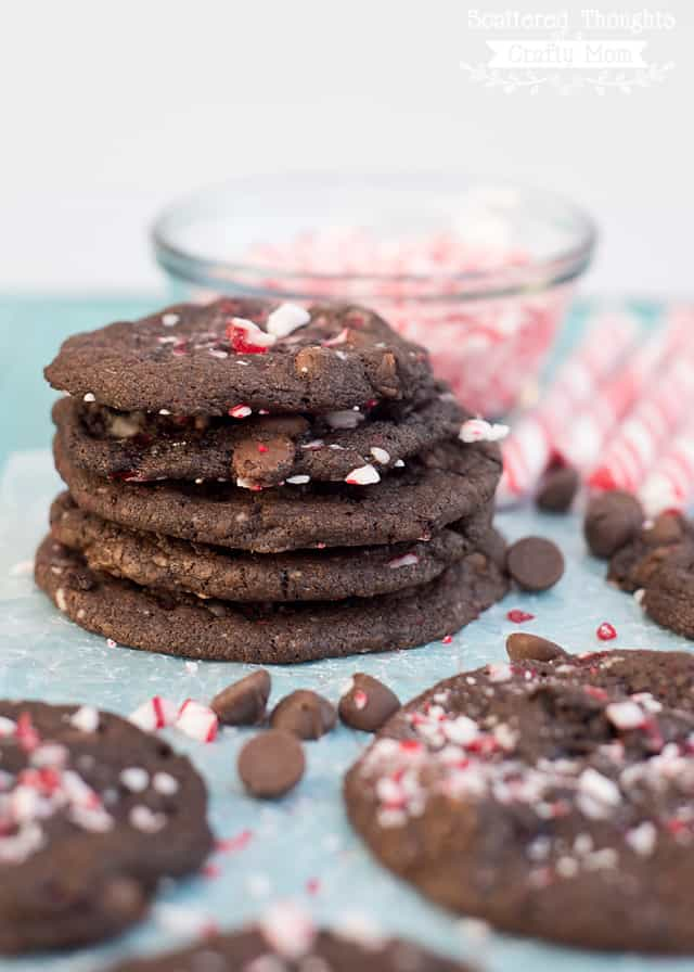 Double Chocolate Peppermint Cookies - Scattered Thoughts ...