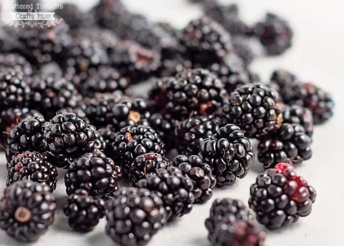 easy blackberry sauce
