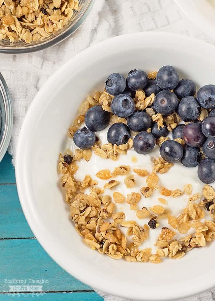 blueberry crunch yogurt bowl