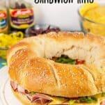 sub-sandwich-ring1