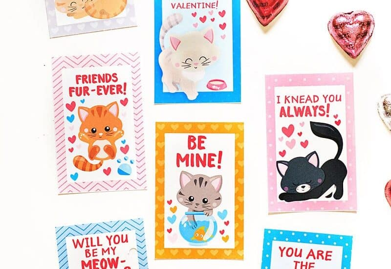Free Printable Kitty Valentine Card PDF