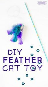 How to make a feathered cat toy (DIY cat toy ideas)
