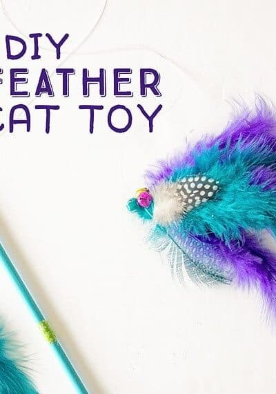 DIY Feathered Cat Toy