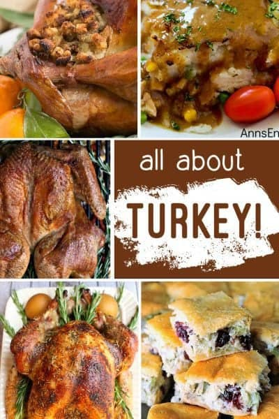 All about Turkey + Inspiration Monday 11.19.17