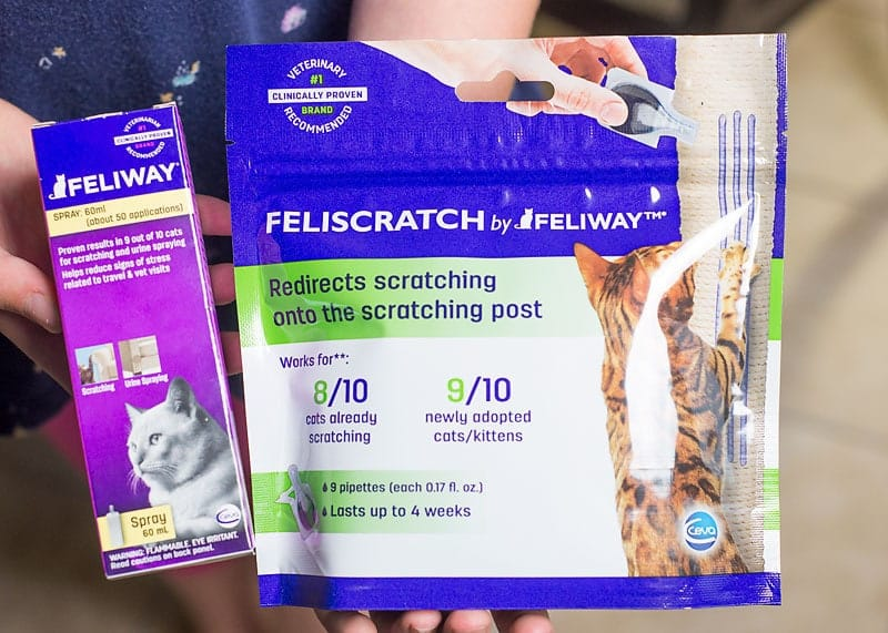 What is Feliscratch and how does it work?