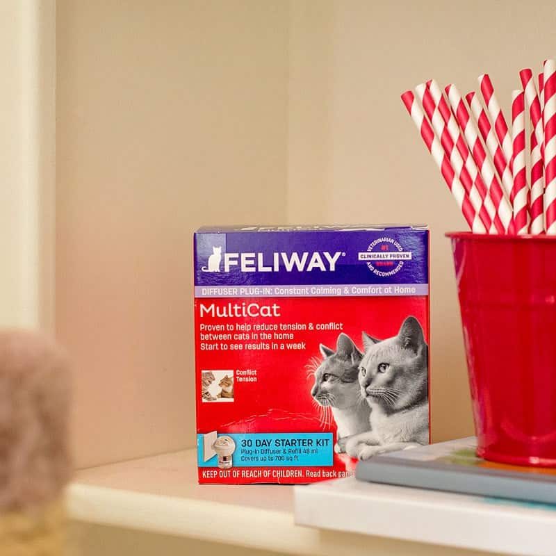 feliway multicat review