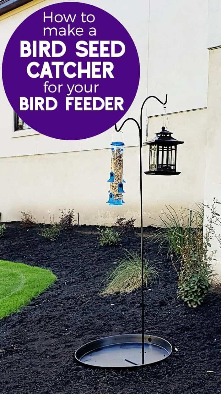 diy Bird Seed Catcher