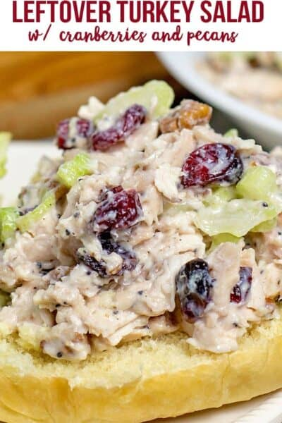 Turkey Salad Recipe with Cranberries and Pecans