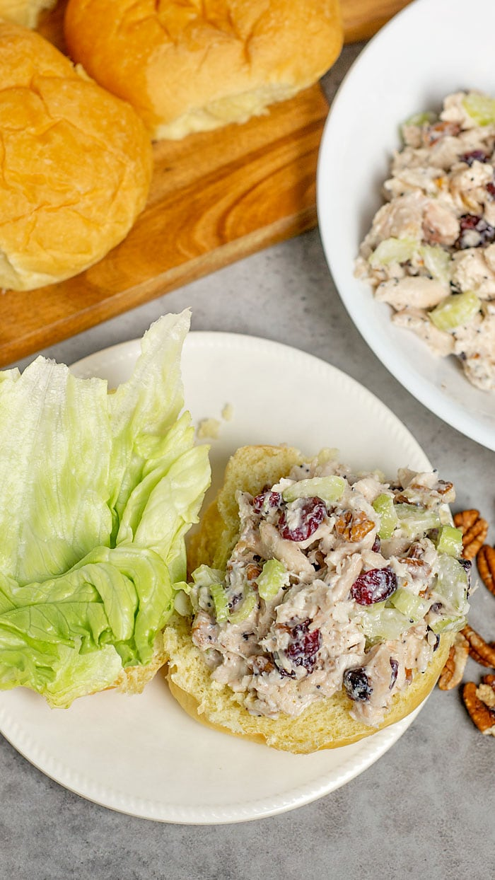 Turkey Salad with Cranberries and pecans