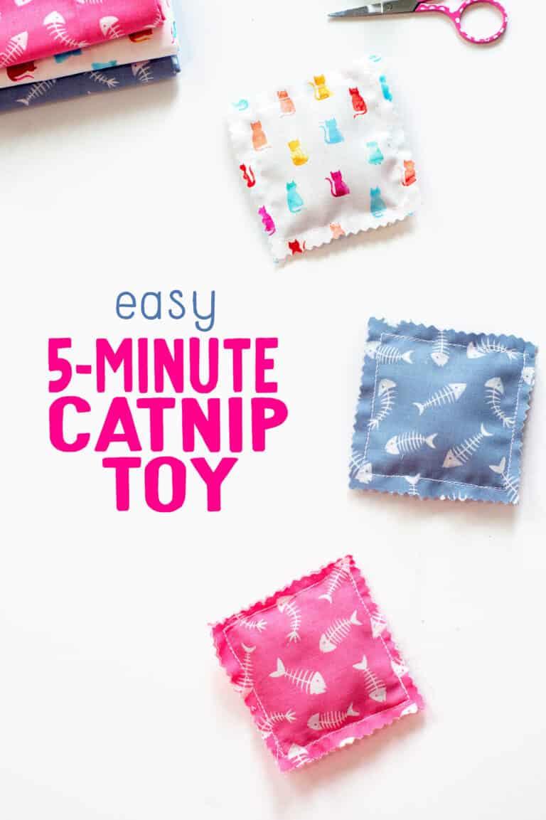 5 Minute Catnip Toy