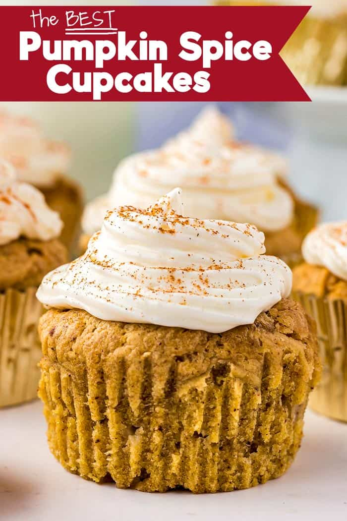 the best pumpkin spice cupcakes with cream cheese frosting
